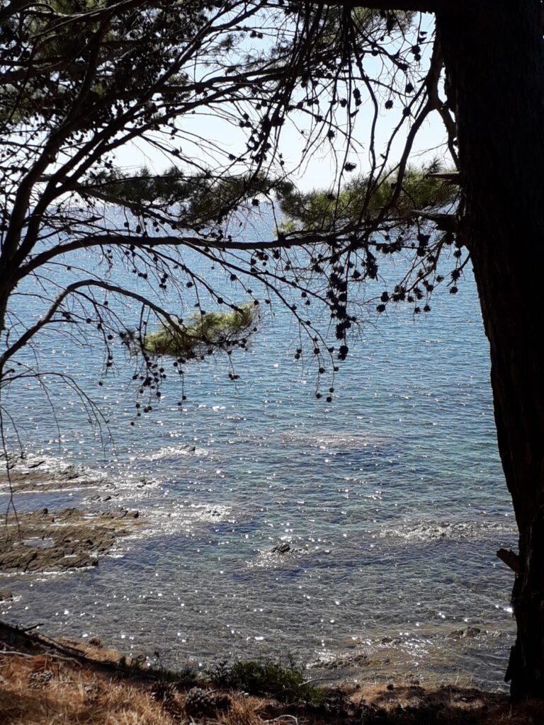 Ogliasto Marina-cilentohome.com