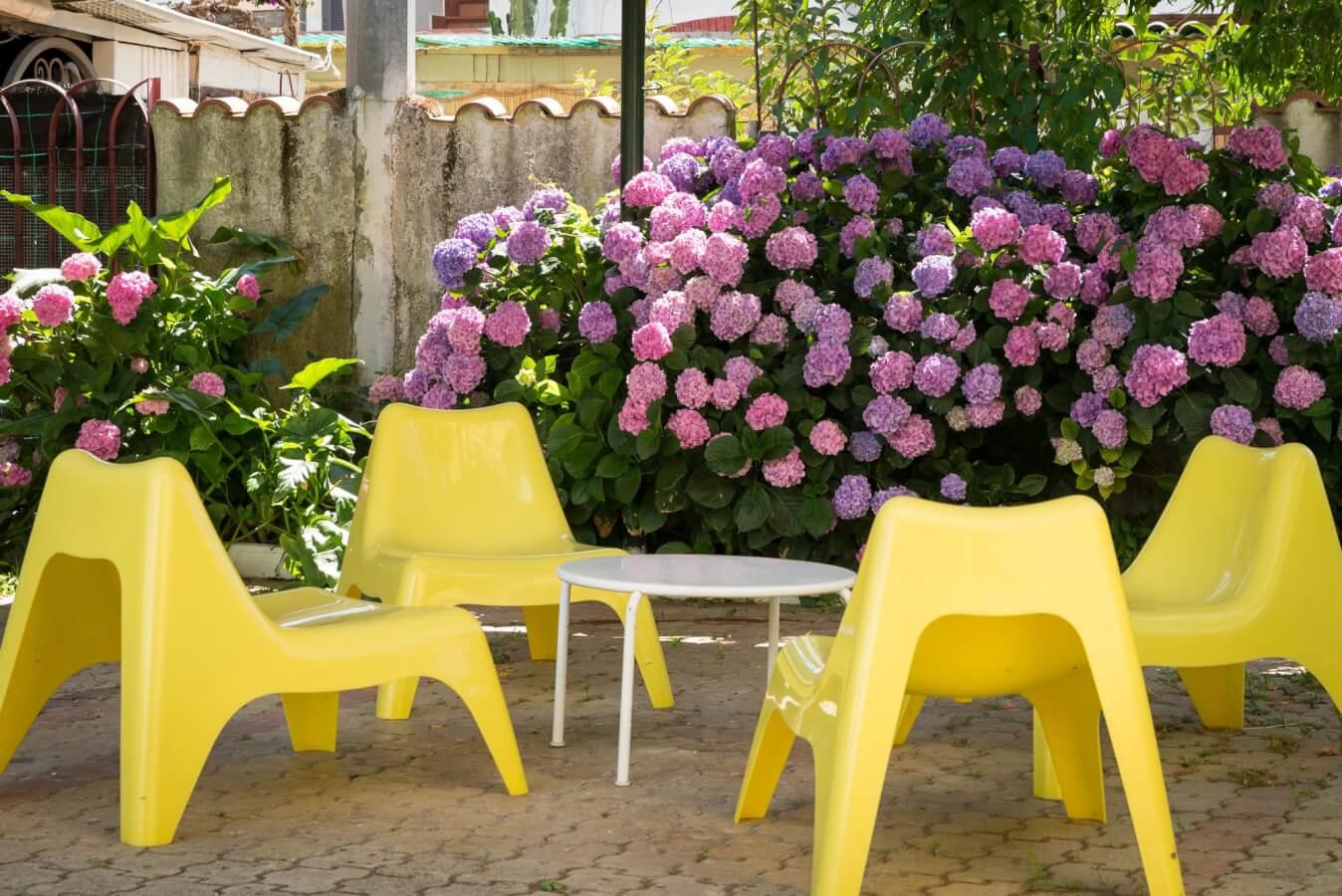 Casa Vacanze Il Girasole-cilentohome.com